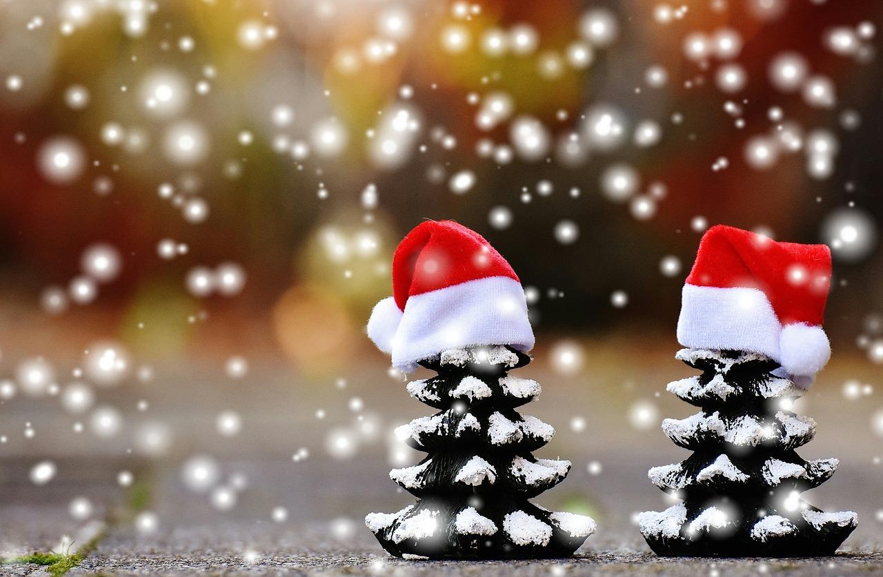 Vánoce BARVY PLUS 2016